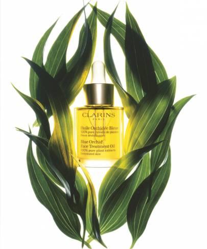 Gesichtskosmetik Aroma-Pflanzengold